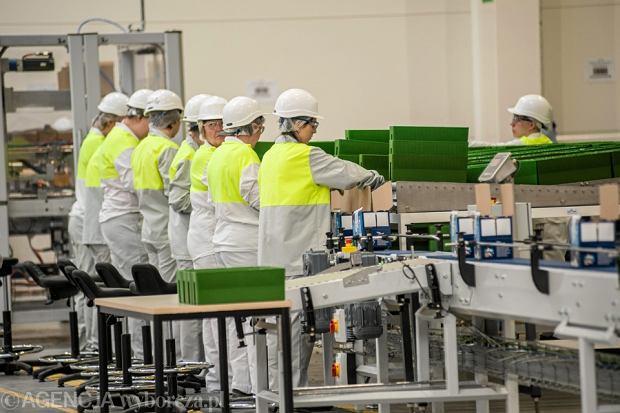 Raport OECD: Polacy lepiej wykszta�ceni, wi�cej pracuj�, mniej zarabiaj�