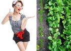 Wystarczająco Perfekcyjna Pani Domu: ogród - sprytne ekologiczne porady [DUŻO ZDJĘĆ]