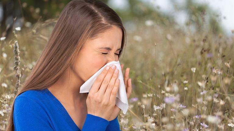 Maleinian feniraminy jest nieselektywnym lekiem pierwszej generacji i ma działanie antyhistaminowe. Sprawdza się w łagodzeniu dokuczliwych objawów alergii, pyłkowicy oraz kataru siennego