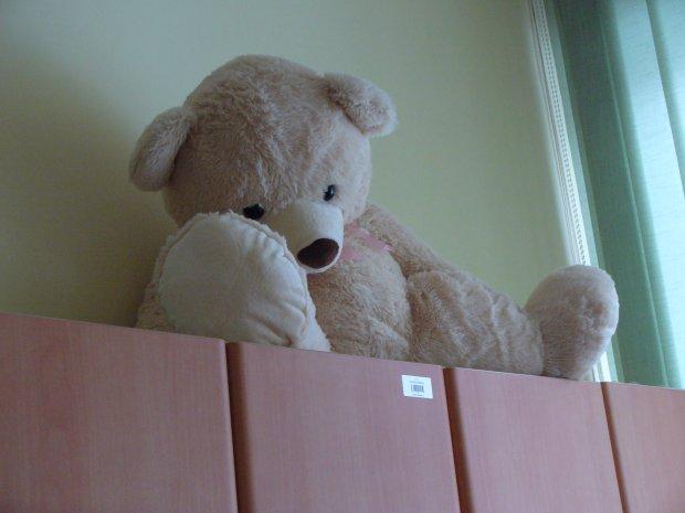 Pastwi� si� nad zabawkami: rzucaj� nimi, uderzaj�, pal�. W Laboratorium Zabawek robi� to dla dobra dzieci