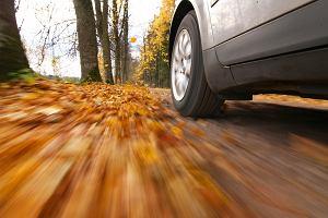 Jesień na drodze - na co uważać