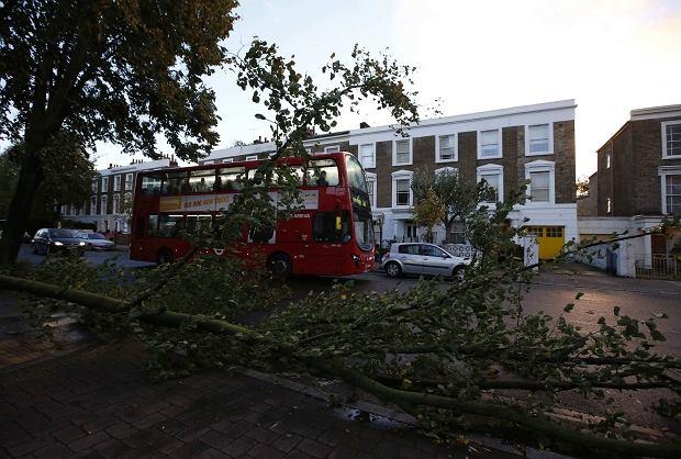 34-letnia Polka w�r�d ofiar orkanu w Wielkiej Brytanii. Zgin�a pod gruzami domu