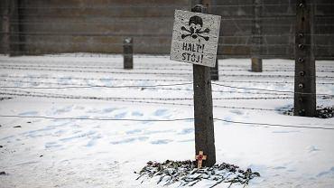 Nie da się opowiadać wyłącznie o Polakach, bo ginęli tu Żydzi, Romowie, jeńcy sowieccy, świadkowie Jehowy - mówi dyrektor Muzeum Auschwitz-Birkenau