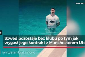 """Zlatan wraca do formy. Chwali się na Instagramie: """"King i Kong!"""""""
