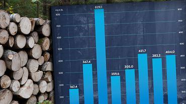 Jak dokładnie i ile zarabiają Lasy Państwowe