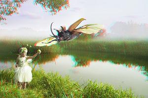 W Galerii Korez zobaczycie żółwia. Na wystawie trójwymiarowych zdjęć