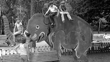 W Lesie Bielańskim stanie figura słonia. Zwierzę po trzydziestu latach nieobecności wróci na dawny plac zabaw w pobliżu ulicy Podleśnej.