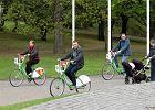 Oto zwycięzcy budżetu obywatelskiego: rowery, aleja kwiatowa, skrzyżowanie i park