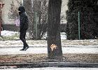Wypadek Beaty Szydło. Kierowca seicento nie przyznał się do winy