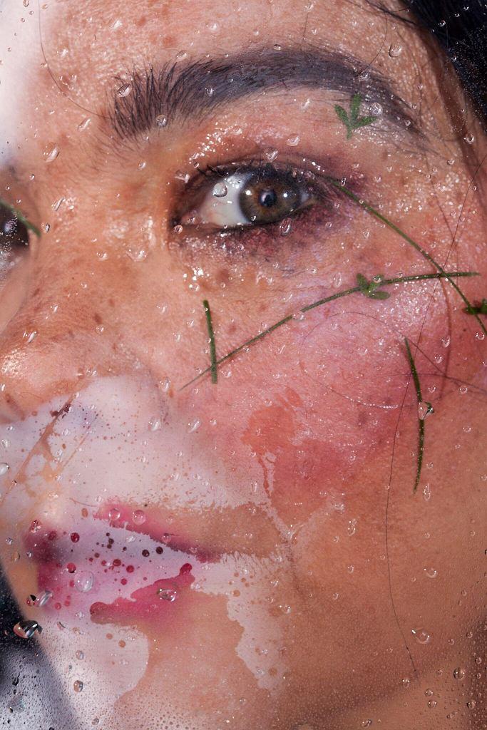 Björk /