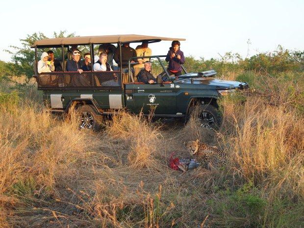 Zastanawiasz si� nad wycieczk� na safari w Afryce? To najlepiej wydane pieni�dze - sprawdzili�my [FOTORELACJA]