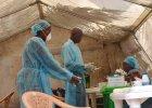 Kenia trafi�a na list� kraj�w zagro�onych ebol�