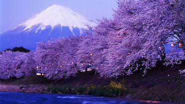 Japonia to kraj gdzie nowoczesność współgra z bogatą historią, a współczesna architektura dużych miast kontrastuje z drewnianą zabudową małych miasteczek bądź wsi.   Mt. Fuji jest najwyższym szczytem w Japonii (3776 m n.p.m.), a dodatkowo jest to wulkan. Japończycy personifikują górę nazywając ją Fuji-san (Pan Fuji).