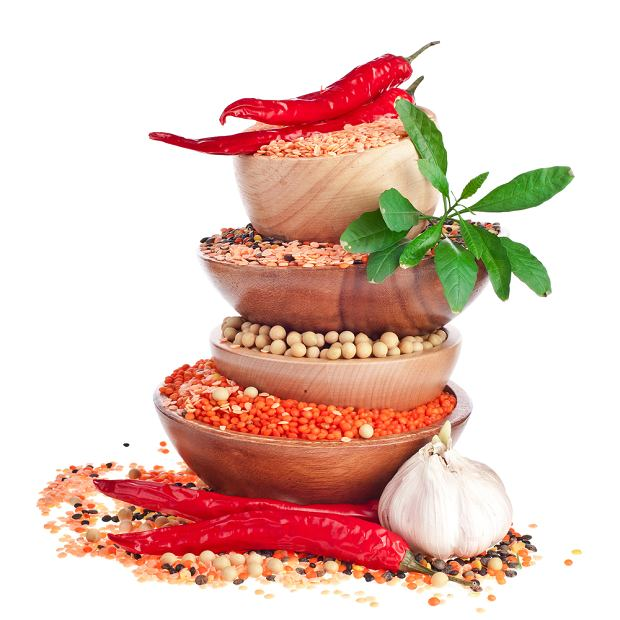 �r�d�a �elaza dla wegetarian i wegan