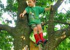 Jak pom�c dziecku z ADHD