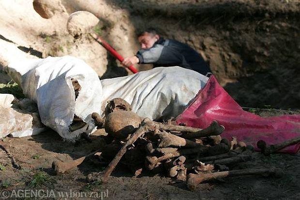Polscy i ukrai�scy archeolodzy odkrywaj� groby w Bykowni