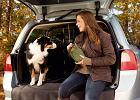 Przew�z zwierz�t | Jak pies z kierowc�
