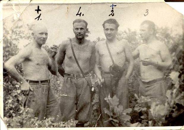 Poakowscy partyzanci w lasach Lubelszczyzny, lato 1947. Od lewej: Walenty Waśkiewicz 'Strzała', Stanisław Kuchcewicz 'Wiktor', Józef Franczak 'Laluś' i Julian Kowalczyk 'Cichy'