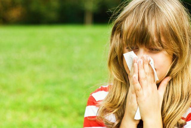 Kichanie, wodnisty katar i łzawienie z oczu to efekt obrony organizmu przed alergenami.