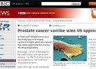Artykuł na stronach BBC