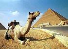 To nie niewolnicy budowali egipskie piramidy