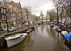 Holandia hitem emigracji, 170 tys. Polak�w ju� tam pracuje