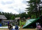 W Puszczy Białowieskiej trwają cięcia i protest mimo stanowiska UNESCO