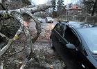 Wichury na południu Polski. Tysiące domów bez prądu, powalone drzewa, zerwany dach