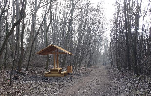 Zdjęcie numer 2 w galerii - W parku Tysiąclecia pojawiły się wiaty, ławki i kosze [ZDJĘCIA]
