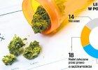 Polacy chc� si� leczy� marihuan� [NOWY SONDA�]