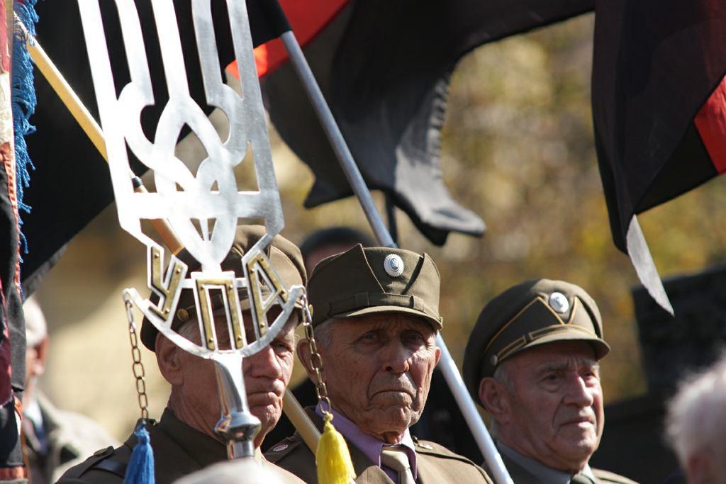 Obchody 66. rocznicy powstania UPA, Lwów, 2008 rok