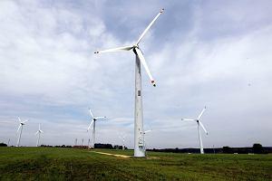 W Szkocji wiatr wia� tak mocno, �e turbiny wiatrowe trzeba by�o wy��czy�. Produkowa�y za du�o pr�du