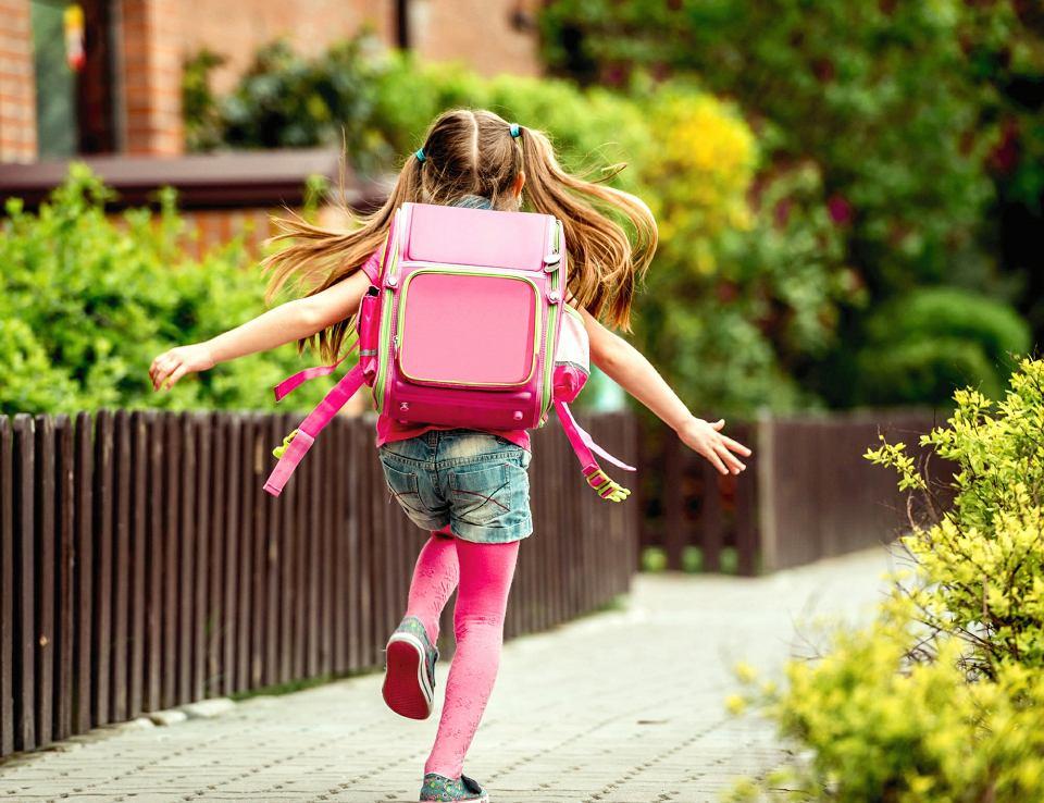 f06f6010e1f9f Tornister na kółkach lepszy niż plecak  Co jest najzdrowsze dla kręgosłupa  dziecka