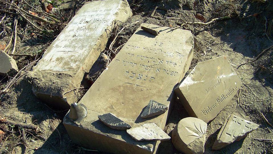 Zdjęcie numer 1 w galerii - Spychacz rozjechał stary żydowski cmentarz. Kości na powierzchni, nagrobki rozrzucone [ZDJĘCIA]