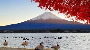 Fudżi (Japonia)
