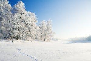 Zimowa adrenalina