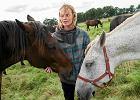 Trzeba ocali� miejsce dla starych koni, uratowanych od rze�ni