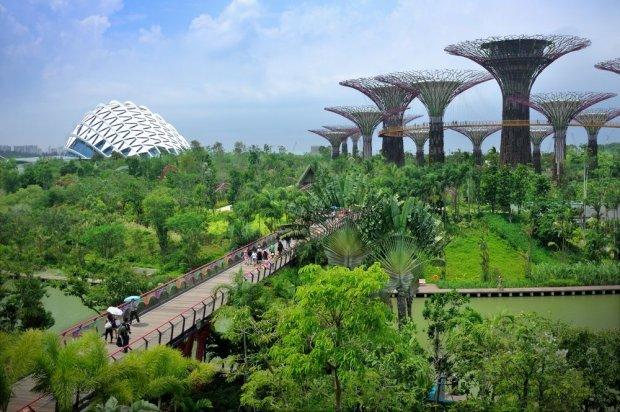 Futurystycznie, bezpiecznie, bajecznie. 10 wielkich atrakcji Singapuru [ZDJ�CIA]