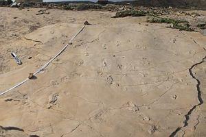 Pierwszy człowiek chodził po Krecie. Odkrycie Polaków