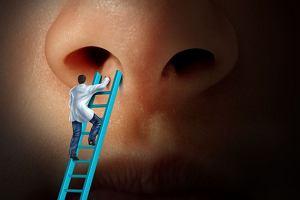 Po co ci ten katar, czyli jak działa ludzki nos