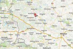 Lubuskie: znaleziono cia�a czterech os�b z ranami postrza�owymi