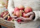Co sprawia, że jabłka wiosną wciąż są świeże