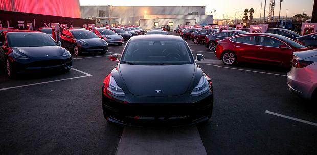 Samochody Tesla Model 3 w fabryce.