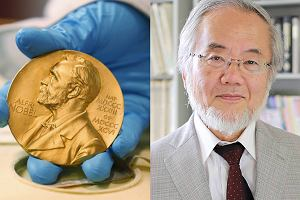 Nobel 2016 z medycyny dla Yoshinori Ohsumi za badania nad autofagami