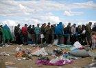 Dlaczego uchodźcy nie jadą do krajów islamskich? Religioznawca: Uwierzyli w obraz Europy raju