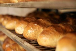 Zarobki w gastronomii - najmniej dla barmana, najwi�cej dla piekarza