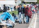 """Słowenia nie utworzy """"korytarza"""" dla migrantów, Austria wznawia kontrole na granicach [PODSUMOWANIE]"""