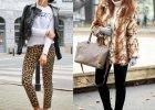 Street fashion: zwierz�cy wz�r wed�ug naszych czytelniczek