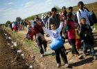Nie bądźmy narodem egoistów. Dlaczego politycy uciekają od europejskiej solidarności?