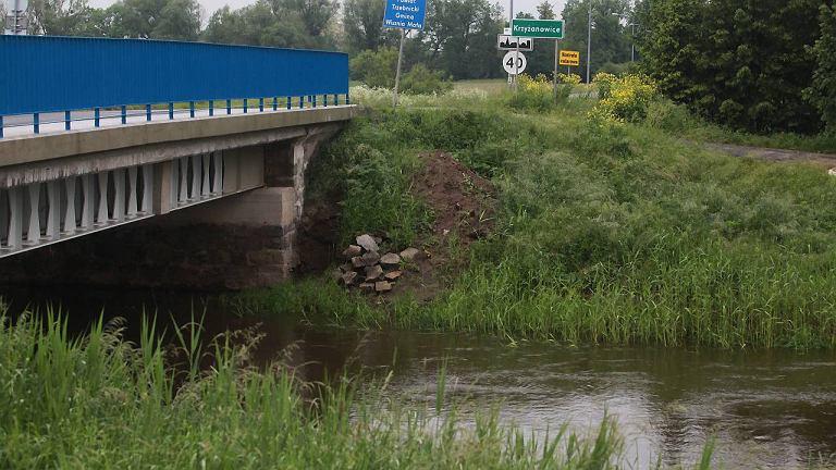 Rzeka Widawa koło Krzyżanowic